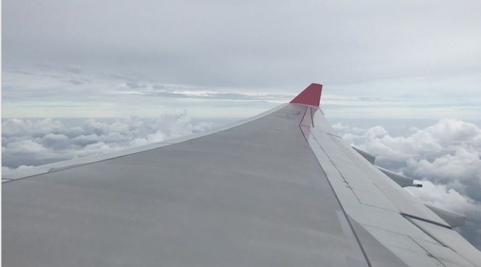photo wingview