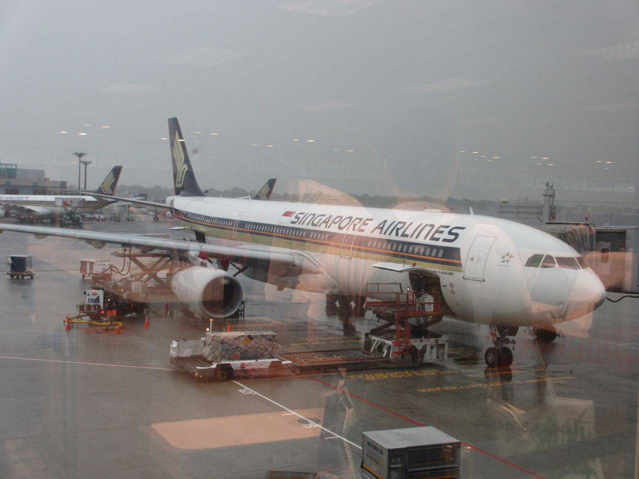 Review of Singapore Airlines flight from Singapore to ...