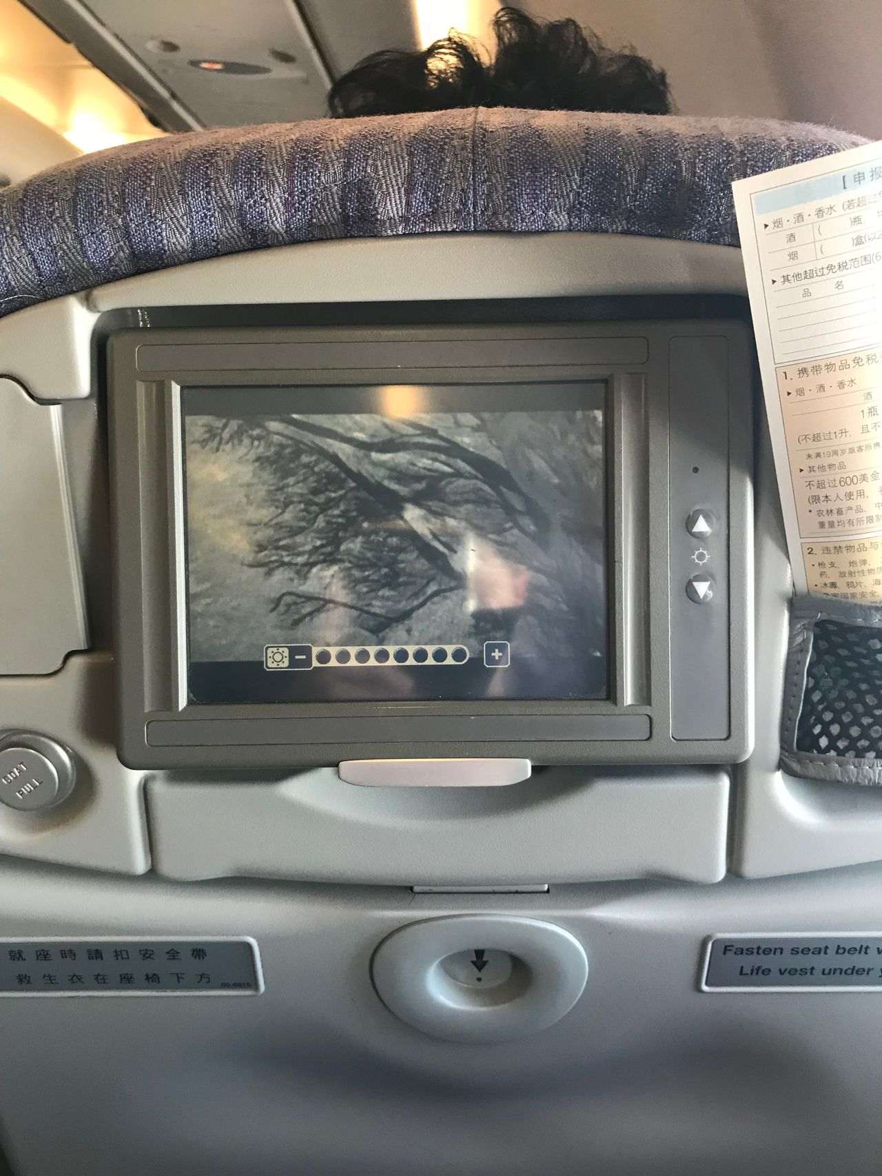 Review Of China Airlines Flight From Taipei To Busan In