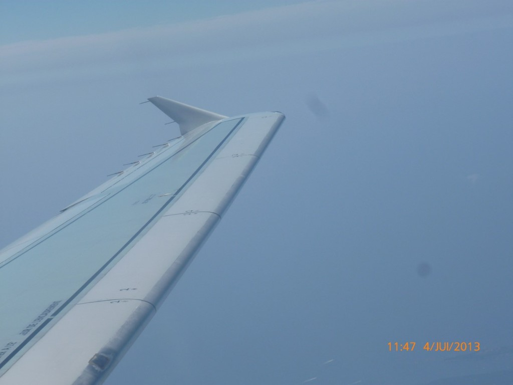 photo Winglet (Copier)